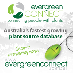 Visit Evergreen Connect