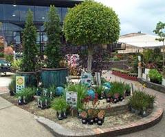 Bonyrigg Garden Centre