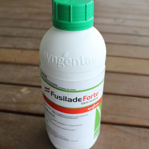 2383 Fusilade Forte small_1000x1000