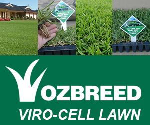 viro-cell-lawn-2