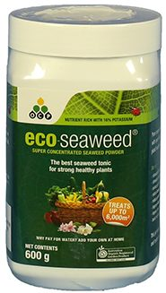 Eco seaweed Organic Fertilizer