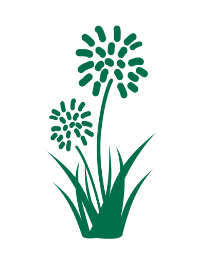 Hardy Exotic Plants