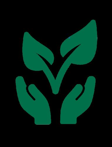 Natural Health Plants