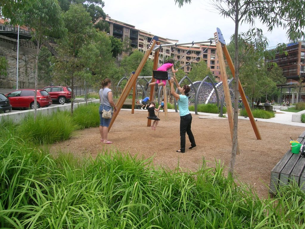 Playground surrounded by native strappy leaf plants including Lomandra and Dianella