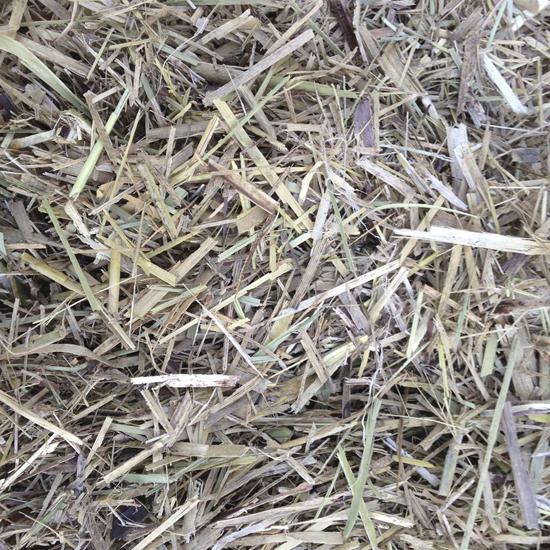 Sugarcane Mulch