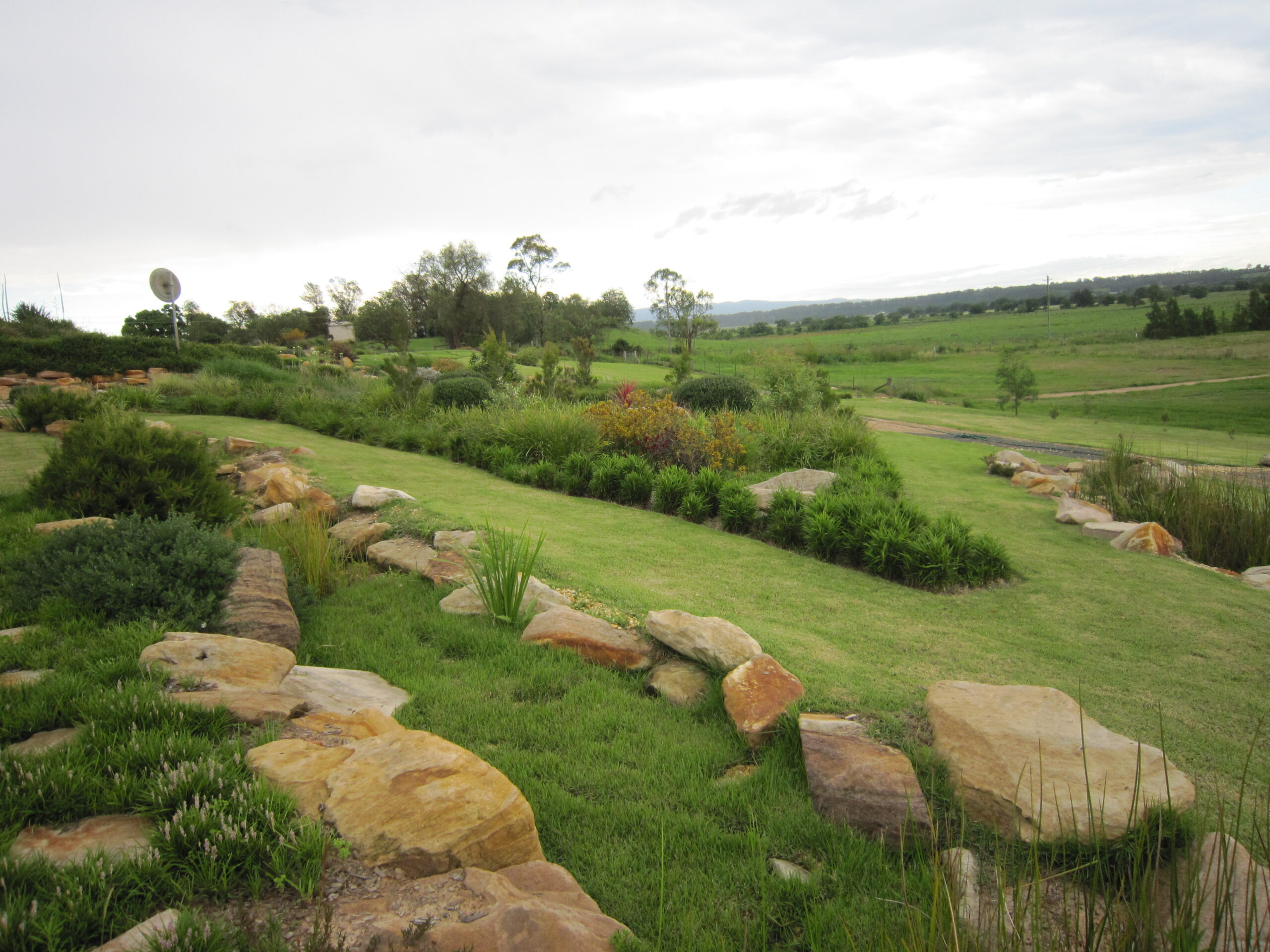 Weed Free Gardens At Ozbreed