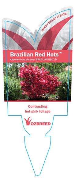 Brazilian Red Hots Label