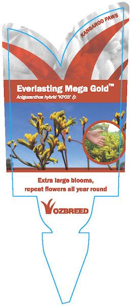Everlasting Mega Gold Label