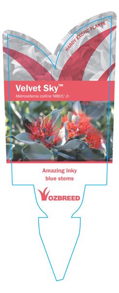 Velvet Sky Label